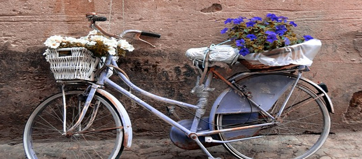 Finalborgo Bicycle